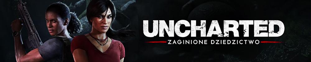 http://www.norbit.pl/unchartedzaginionedziedzictwoplps4_3040